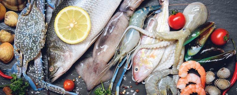 میکروبیولوژی فرآورده های دریایی و انگل ها و مخاطرات آن ها