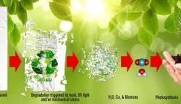 ایجاد باکتری نوترکیب اشریشیا کلی جهت تولید پلاستیک زیست تخریب پذیر
