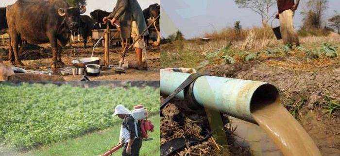 اثرات کشاورزی بر کیفیت آب و سلامت انسان