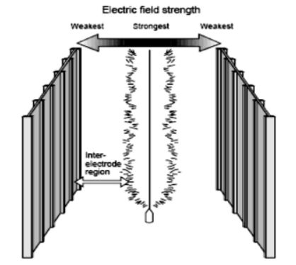 میدان های بین الکترودها