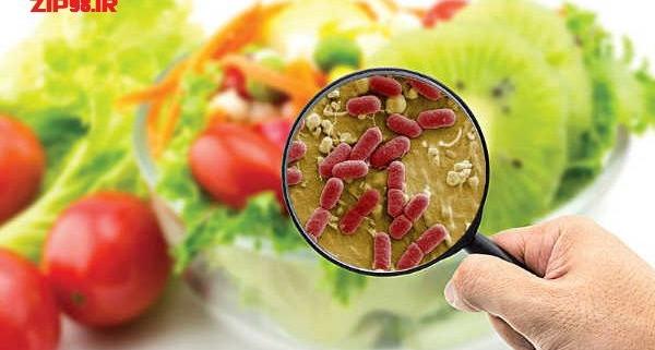 میکروارگانیسم ها و خطرات آلودگی میکروبی مواد غذایی