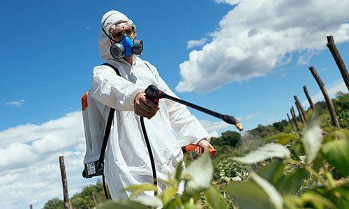 اثرات استفاده از سموم شیمیایی در محصولات کشاورزی