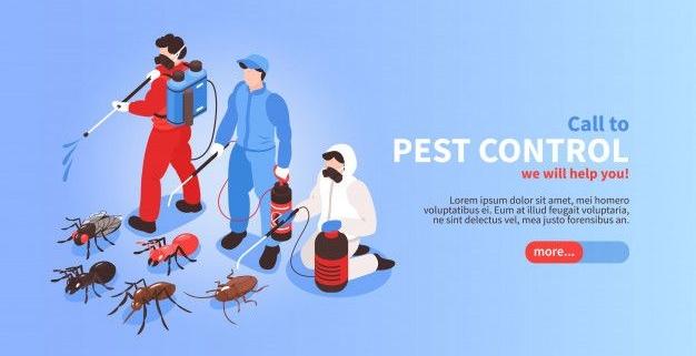حفاظت در مقابل حشرات، بندپایان جوندگان و موجودات موزی