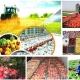 اصول تبدیل و نگهداری فرآورده های کشاورزی