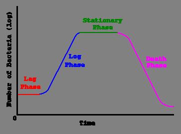 منحنی رشد باکتری ها