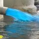 انواع عناصر و ترکیبات حائز اهمیت در آب و فاضلاب