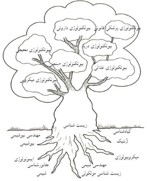 انواع شاخه های بیوتکنولوژی