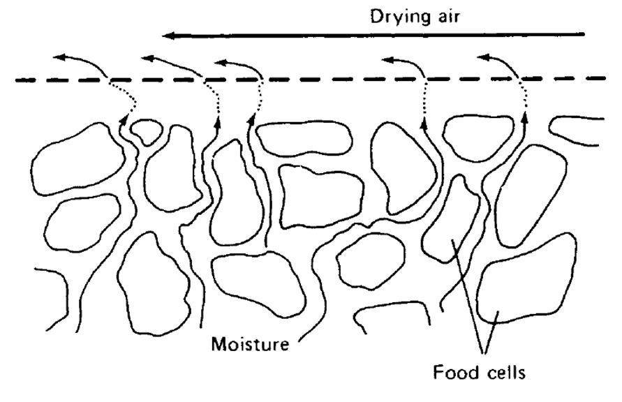 اصول تبخیر آب