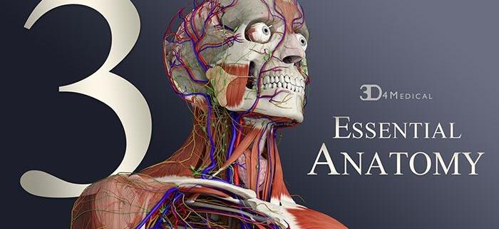 جزوه تشریح آناتومی برای دانشجویان پرستاری