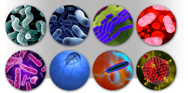جزوه میکروبیولوژی محیطی