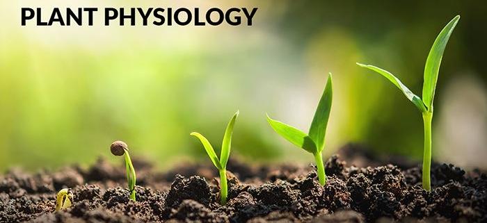 پکیج جامع فیزیولوژی گیاهی