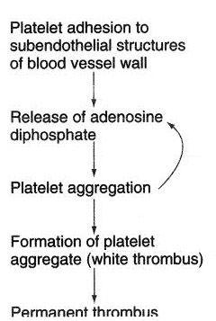 کنترل پلاکت ها در خونریزی