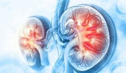 اختلالات و بیماری های کلیه و مجاری ادراری