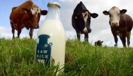 بهداشت شیر و گوشت