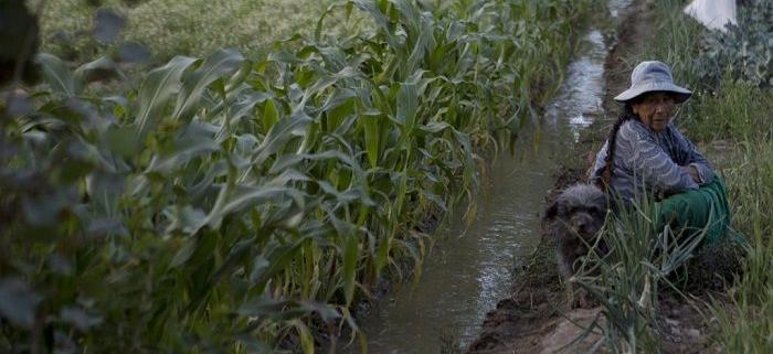 روش های تصفیه فاضلاب برای استفاده در کشاورزی