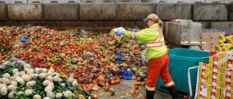 بهداشت و صنایع تبدیل ضایعات مواد غذایی