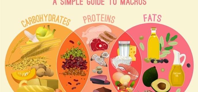 مبانی تغذیه (ضروریات درشت مغذی ها)